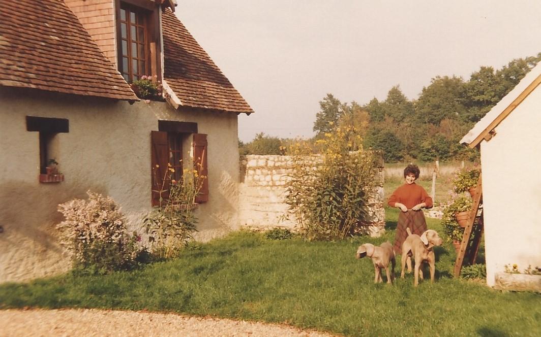 1984 zz 1 automne
