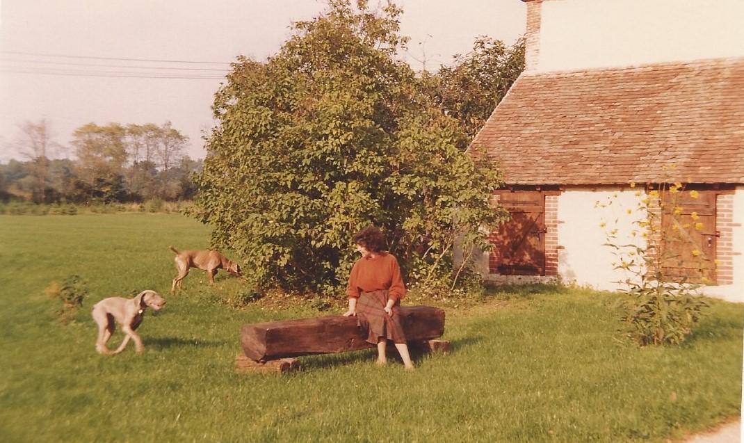1984 zz 2 automne
